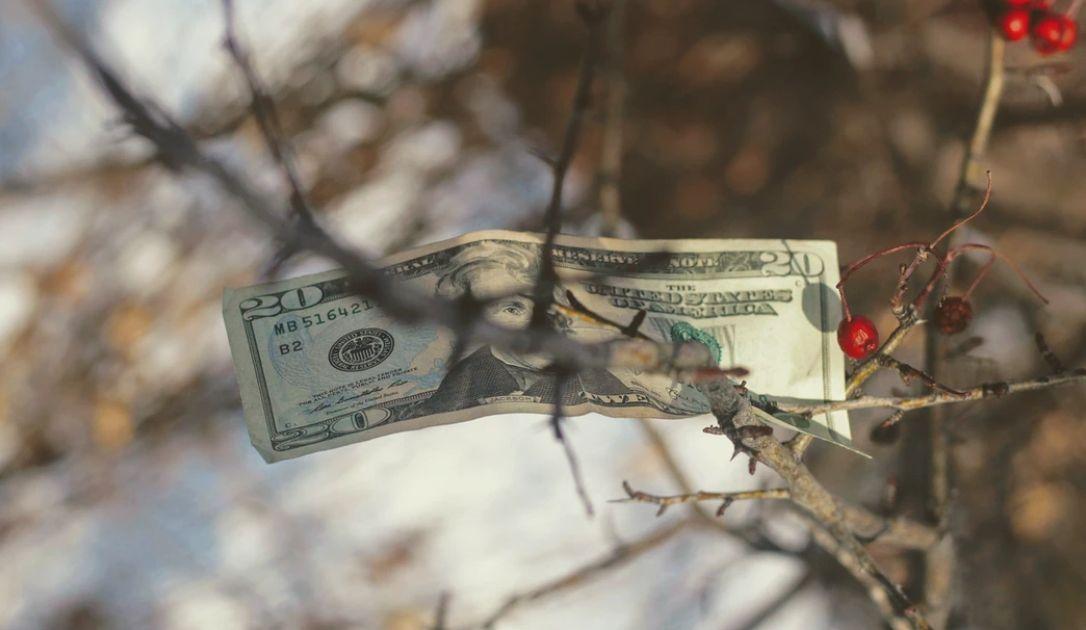 Kurs dolara traci na radykalnej poprawie sentymentu. Wyraźne odbicie na Wall Street. Coraz więcej zakażeń koronawirusem w Pekinie