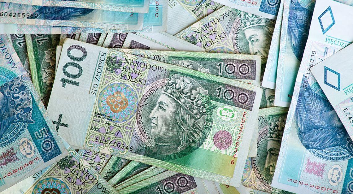 NBP znów drukuje polskiego złotego - wykupił historycznie dużą część długu publicznego