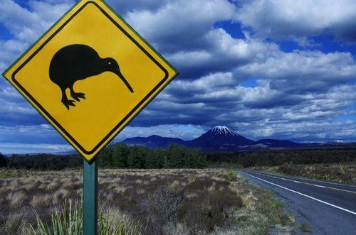 Notowania kursu dolara australijskiego do nowozelandzkiego (AUD/NZD). Jak rysuje się przyszłość AUD?