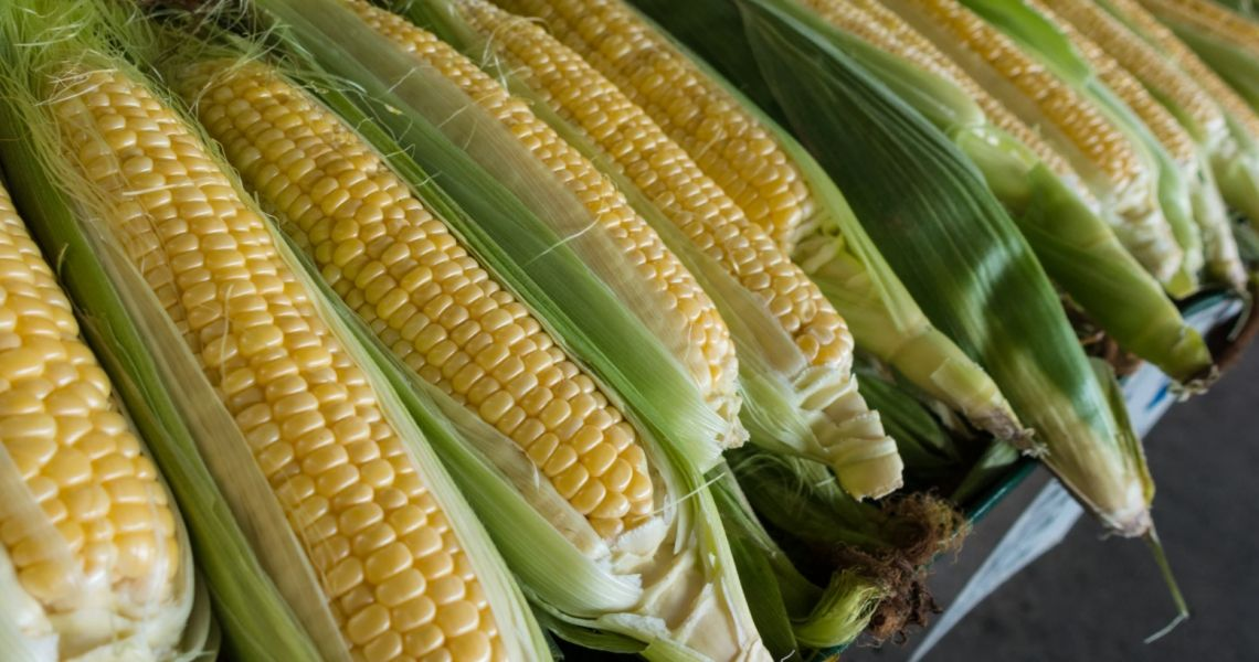 Odreagowanie po zwyżkach cen kukurydzy i soi