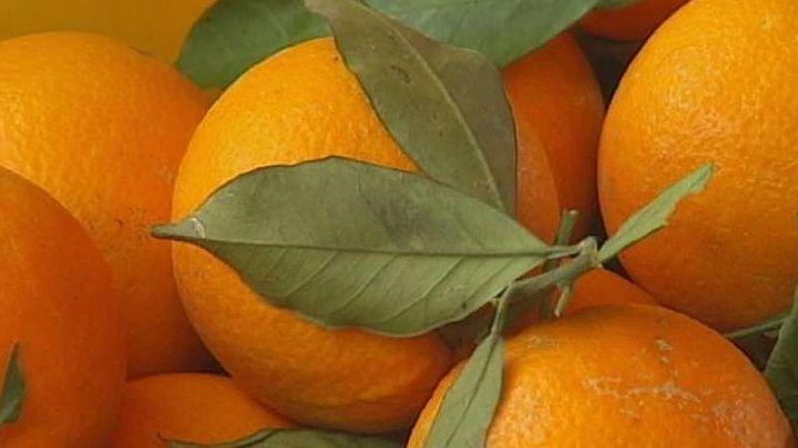 Play Orange Orlen KGHM Alior Bank XTB GPW