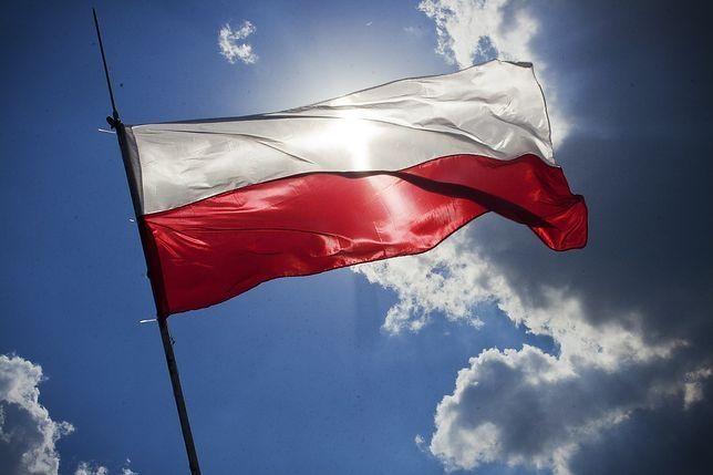 Polski złoty (PLN) umacnia się. Kursy euro (EUR), dolara (USD), franka (CHF) i funta (GBP) 11 listopada po południu