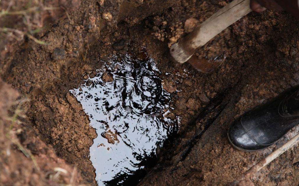 Przedłużenia cięć produkcji ropy w OPEC+ jednak nie będzie? Cena złota odreagowuje dużą zniżkę