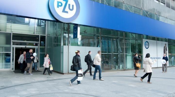 PZU i PGNiG z wyższymi zyskami, ale tylko ubezpieczyciel zamierza się nimi podzielić