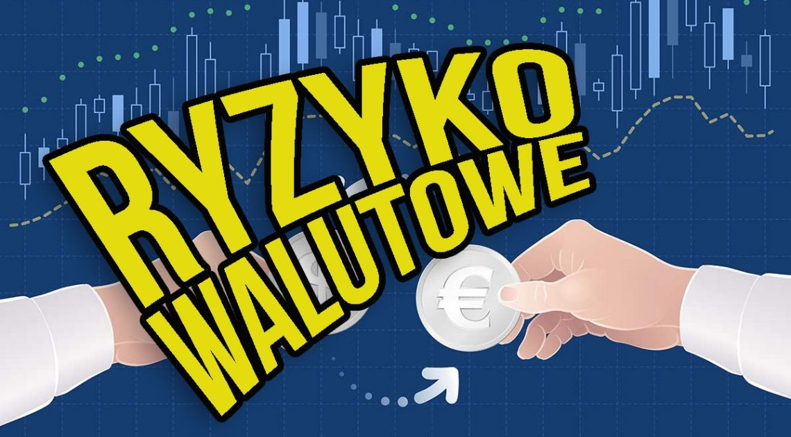 ETF ryzyko walutowe - jak uniknąć niepotrzebnych strat przy inwestowaniu w ETF? | FXMAG INWESTOR