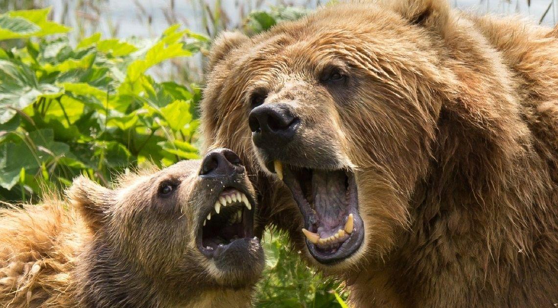 Spora nerwowość na rynkach kapitałowych. S&P500 i Nasdaq pikują w dół w końcowej fazie notowań