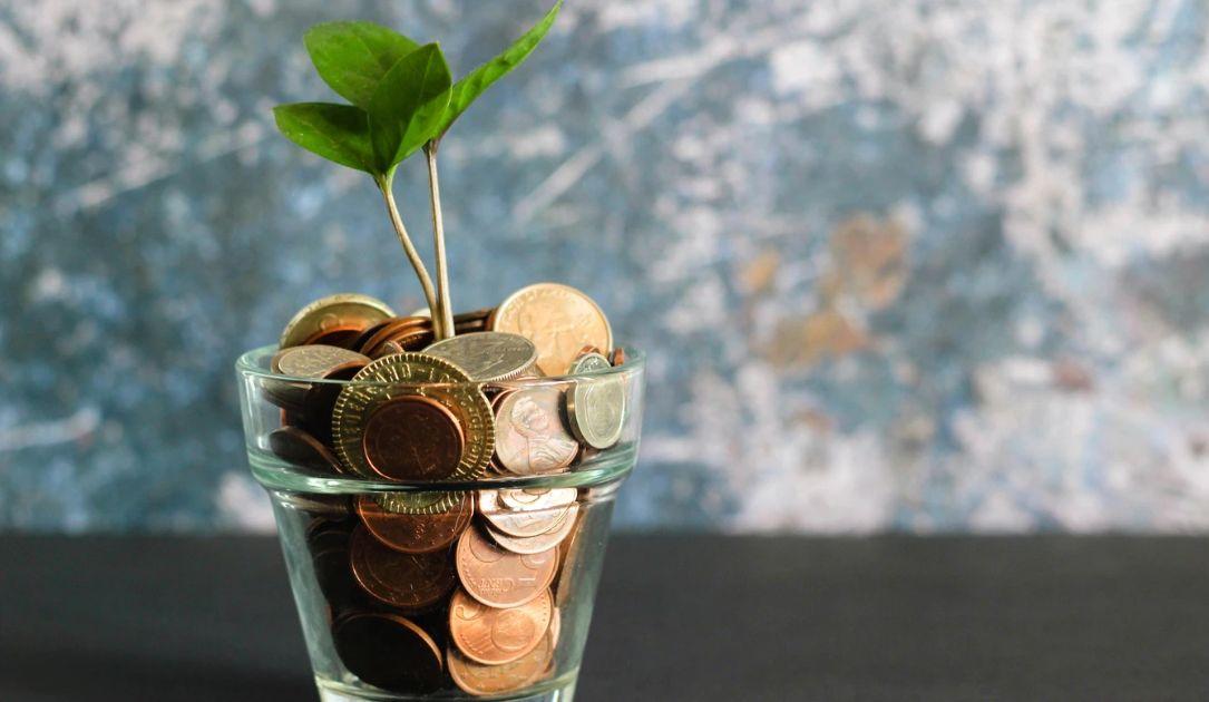 Tani pieniądz ratuje rynek. Notowania giełdowe