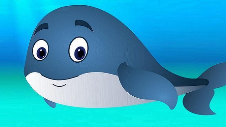 wieloryb kryptowaluty akcje