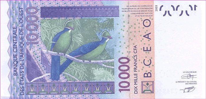 Unie Walutowe cz. 4 - Frank CFA – recepta krajów Afryki na stabilność gospodarczą