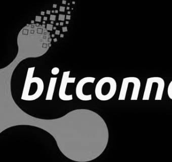 BitConnect - jak na kryptowalucie zbudowano piramidę finansową?
