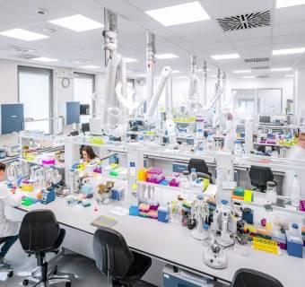 Captor Therapeutics - trwa największe biotechnologiczne IPO na GPW. Co warto wiedzieć o spółce przed zakupem akcji?