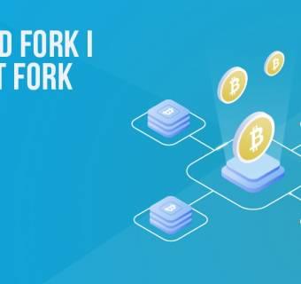Hard fork i soft fork w sieci bitcoina i nie tylko | #21 Kurs BTC od Zera