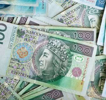 NBP znów drukuje polskiego złotego - w pół roku wykupił historycznie dużą część długu publicznego