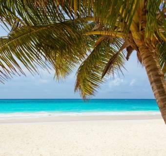 Paradise Papers - czyli kłopoty w raju... Podatkowym cz.1