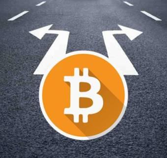 Skąd Polacy czerpią wiedzę o Bitcoin?